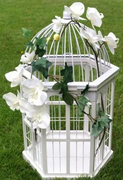 Cage oiseaux urne d cor e loc housse d coration loc - Petite cage oiseau deco ...